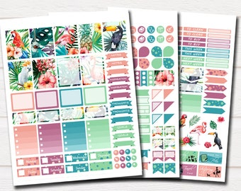 Printable Tropical Planner Stickers-Flamingo Planner Stickers-Summer Planner Stickers-Agenda Stickers Kit-Monthly Stickers-Full Box Stickers