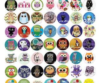 Digital OWL 2016 70 images in 25 mm Board