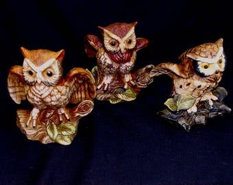 Vintage owl figurine lot-old owls collection