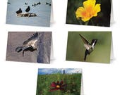 Wildlife Blank Greetings ...