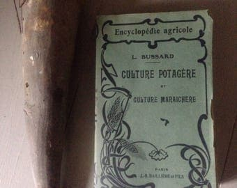 Decorative French Encyclopedie Agricole/Illustrated book/