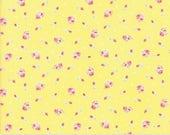 First Romance   Honey Bun  8401 12