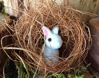 Fairy Garden Bunnies In Their Burrows