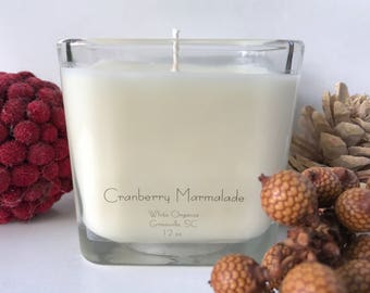 Cranberry Marmalade, Christmas, Holiday, 100% All Natural Soybean Candle, 12 oz., Eco Friendly, Clean Burning, No Color or Dyes, MADE IN USA