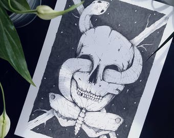 A4 original. Pen and ink drawing. Skull drawing. Black and white artwork