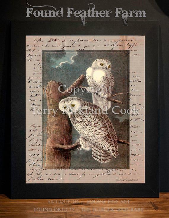 "Snowy Owls ~ Original Vintage Art Collage 20"" x 24"" Framed Giclee Print"