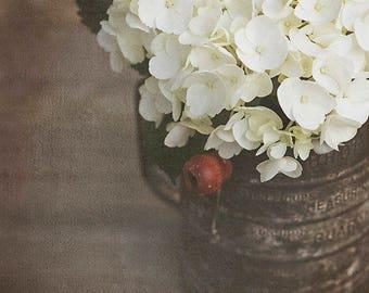 Hydrangea Flower Photography, Cottage Style Decor, Rustic Farmhouse Wall Art, White Hydrangea Art, Botanical Wall Art, Flower Art Print