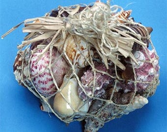 Seashell Mix in Abaca Net  (Approx.  Kilo Size Bag)  (EA)