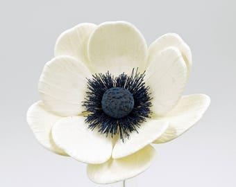 Navy and White Anemone
