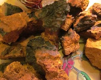 "Chaga Tea - Wild Harvest, Fresh Chunks From, ""Tame the Spirit"""