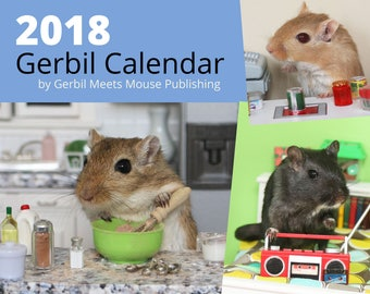 2018 Gerbil Wall Calendar by Gerbil Meets Mouse Publishing - FREE Shipping