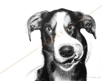 Dog Drawing Print – Black and White (Fido)