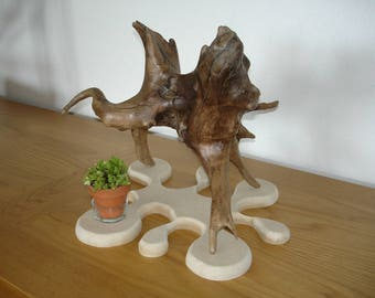 """Pee"" Driftwood sculpture Oboisdormant"