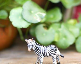Cute Zebra!!!