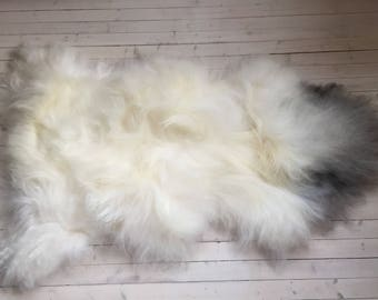 White grey long haired XL sheepskin rug spael sheep skin throw 17231