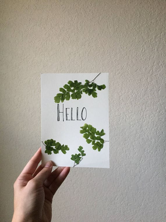 Hello Typography Art with Pressed Maidenhair Fern - Pressed Fern & Calligraphy Art- Word Art Herbarium 8x10- Botanical Art