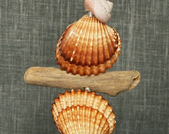 Totem decorative sea shells and Driftwood