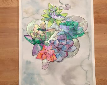 Succulent serpent watercolor