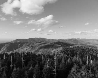 Smoky Mountain Skyline - Black and White print
