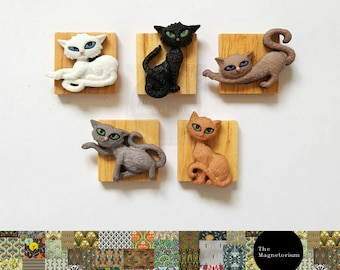 Cat Fridge Magnet Set