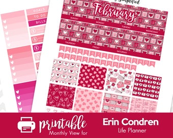 Printable Planner Stickers February Monthly View Kit! w/ Cut Files! Pink & Magenta Valentine's Day Theme! For use with Erin Condren!