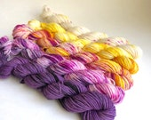 Mango Plum Gradient Yarn Set