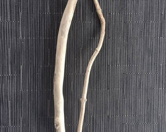 2 Driftwood branches - wood branches, seawood, driftwood