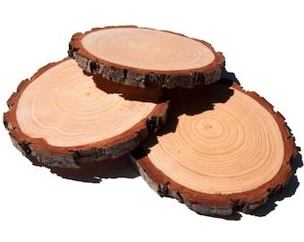 8 - 10 cm Wood Slices 10 pack, 3 - 4 Inch Wood Slices, Wood Burning, Rustic Wedding Wood Slices, Wood Slice Coasters, Pyrography Wood