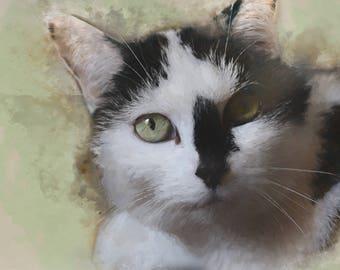Custom Pet Portraits, Custom Portrait, Painting From Photo, Digital Painting, Custom Art, Dog Portrait, Cat Portrait