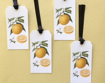 Gift Tags, Lemons, Lemon, Tags, Fruit