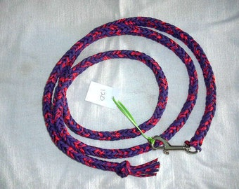 Miniature horse lead rope braided/dog leash