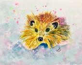 Mr. Scruffy hedgehog -Mus...