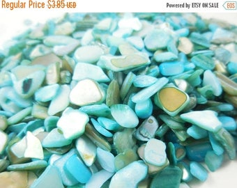 20% Off Storewide Crushed Seashells, Natural Shells, Turquoise Seashells for Fairy Gardens, Fairy House, Terrariums, Floral Vase Fillers and