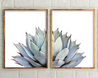 Set Of 2 Prints, Cactus Print, Cactus, Botanical Print, Cactus Art,