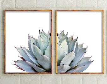 Set Of 2 Prints, Cactus Print, Cactus, Botanical Print, Cactus Art, Cactus Wall Art, Art, Prints, Succulent Print, Wall Decor, Australia
