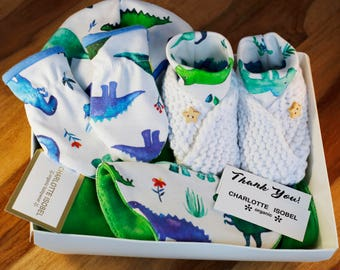 Dinosaur Coming Home Outfit with Hat Mittens Bib and Baby Trousers