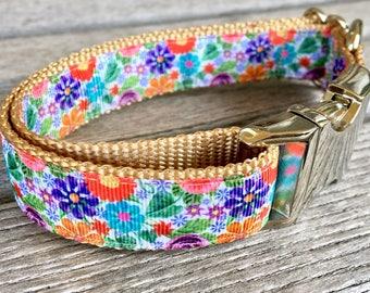 "Wild Flower 1"" Dog Collar, Colorful Floral Dog Collar, Silver Hardware Nylon Webbing"