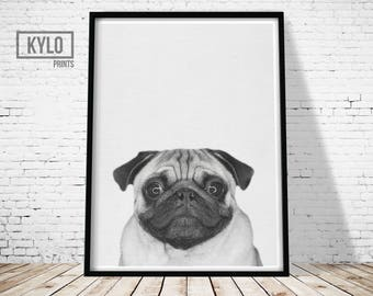 Pug Print, Animal Print, Nursery Wall Art, Pug Photo, Pug Art, Instant Download, Pug Gift, Funny Animal Print, Nursery Animals, Funny Print