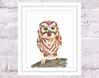 Baby Owl Print, Watercolor Owl, Saw Whet Owl, Watercolor Bird Print, Woodland Owl, Night Owl Art, Strigiformes Print, Cute Owl