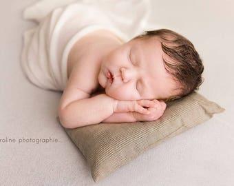 Newborn Pillow; Newborn  Prop; Newborn posing; Boy; Newborn Photo Prop; Newborn Posing Pillow; Pillow