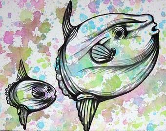"11""x14"" Sunfish print."