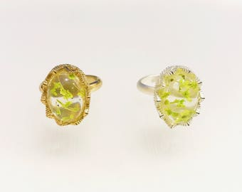 Resin Ring, Daisy Cherry Blossoms Silver Gold Plated Lace oval Flower green caldesia Rainbow Glow Reflection