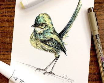 Art Print from Original Pen & Ink Illustration - Green Wren