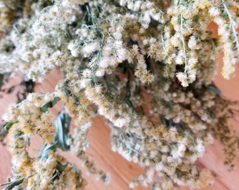 Dried Goldenrod, Long-stemmed, Dried Wildflowers, Yellow Flowers, Dried Flower Bunch, Flower Bouquet, Solidago canadensis, Rustic flower