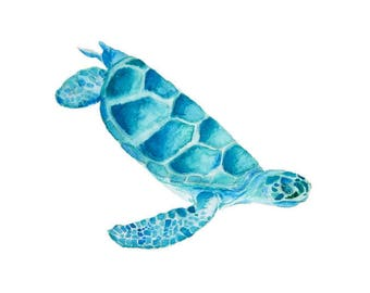 Turtle Wall Art sea turtle wall art | etsy