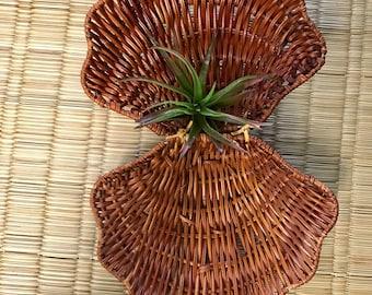 Small wicker shell basket