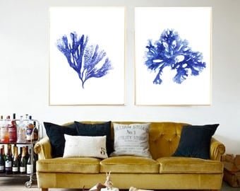 Seaweed watercolor Set of 2 Seaweed painting Seaweed art print Seaweed poster Blue Seaweed Nautical decor Seaweed decor Beach house decor