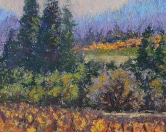NAPA VALLEY VINEYARD in Original 6.5 x 5 inch Miniature Pastel Painting by Sharon Weiss