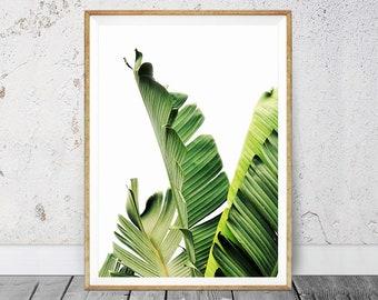 Banana Leaf Print, Banana Leaf Art, Palm Leaf Print, Tropical Wall Art, Tropical Print, Printable Art, Leaf Print, Botanical Leaf Art