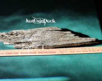 Large piece of Appalachian lake driftwood aproximately 30 x 6 x inches.  Wood, rustic, beach craft.
